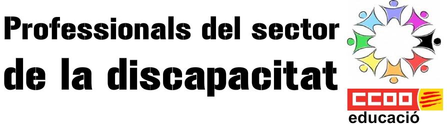 Professionals del sector de la diversitat funcional a Catalunya