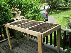 Eat Live Grow Paleo : Square Foot Gardening - Wheelchair ...