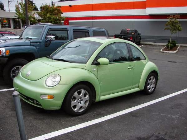 vw beetle  owner