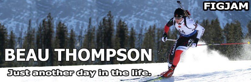 "Beau Thompson's ""Just Another Day in the Life"""
