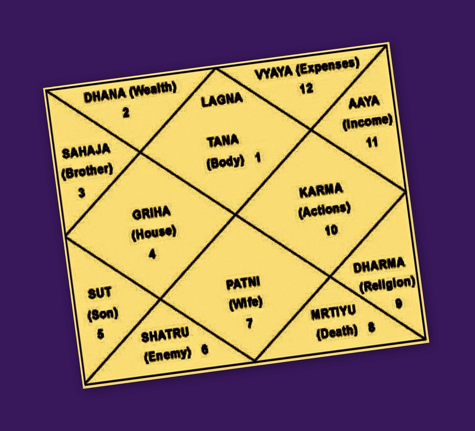 Vedic Astrological Remedies Effects Of 12 Astrological Houses Of