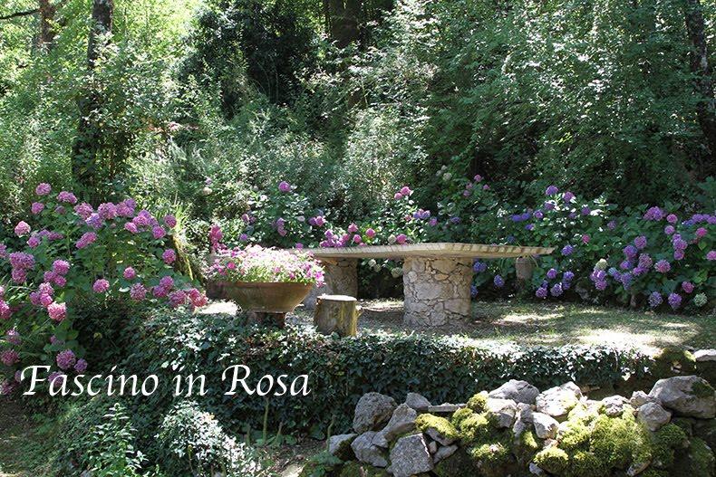 Fascino in Rosa