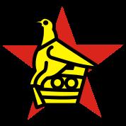 Bel oiseau magique  Zimbabwe-Bird-Star