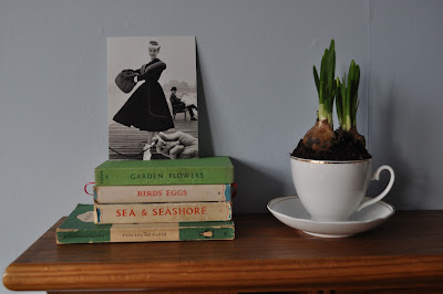 tea cup and books http://snadralovesblogging.blogspot.co.uk/