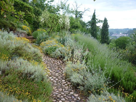 Il giardino gaudente il giardino mediterraneo - Giardini mediterranei ...