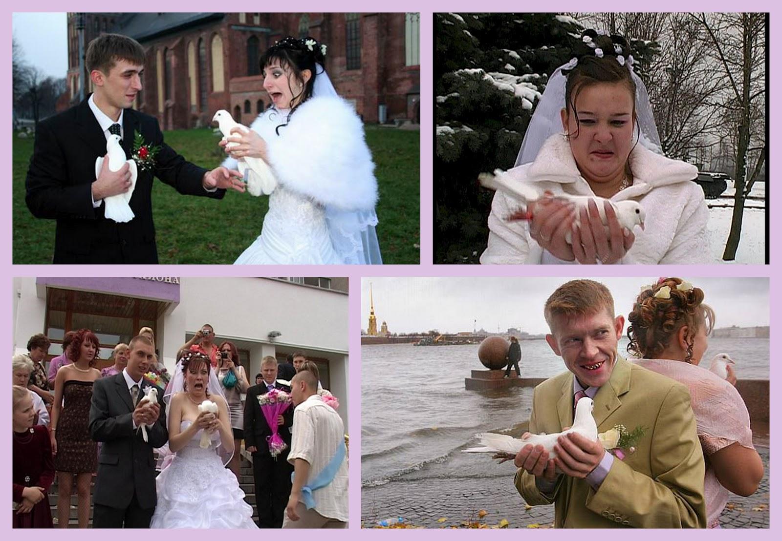 невеста трахается со сведетелем на свадьбе