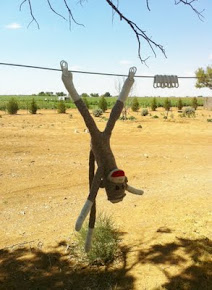 "Bad Monkey ""Hanging out to dry"""