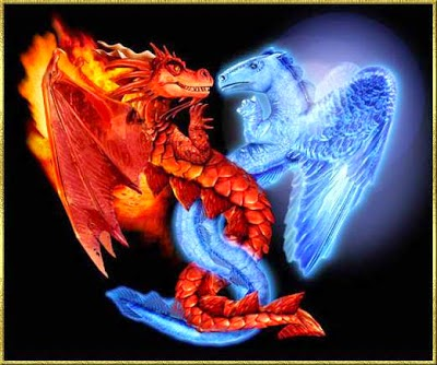 dragon blanco y dragon rojo