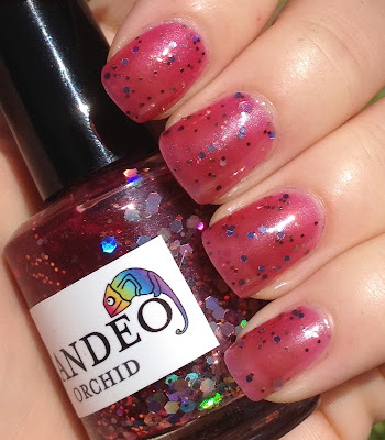 Candeo Colors Orchid