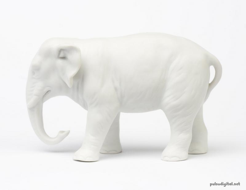 ¿Qué es un Elefante Blanco?