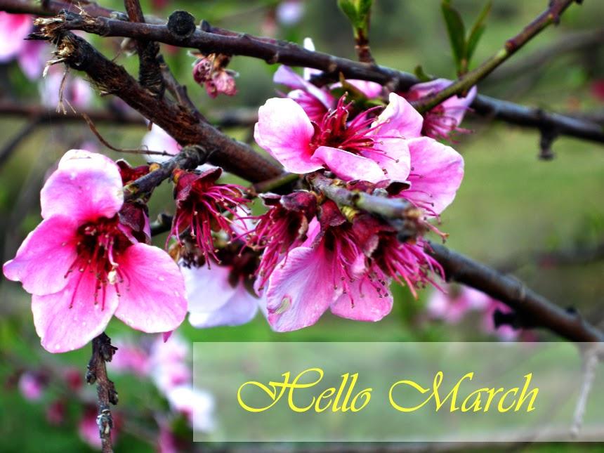 http://3.bp.blogspot.com/-DQgO9JtexRU/VPM-Em4_-GI/AAAAAAAAFCY/yMd7iNsjlS4/s1600/hello%2Bmarch.jpg