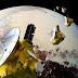 New Horizons riaccende i motori