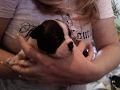My fur babies!!