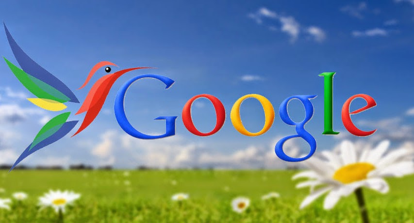 One Year Anniversary of Google Hummingbird