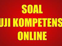 Contoh Soal UKG Online 2012 untuk SD dan SMP
