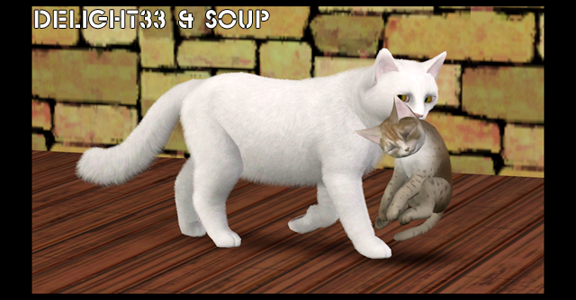 Cats And Dogs Sims  Cd