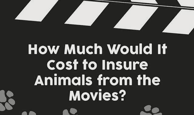 Image: How Much Would It Cost to Insure Animals from the Movies?