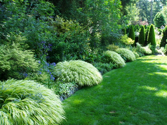 A next generation gardener a pacific northwest treasure for Garden shrubs