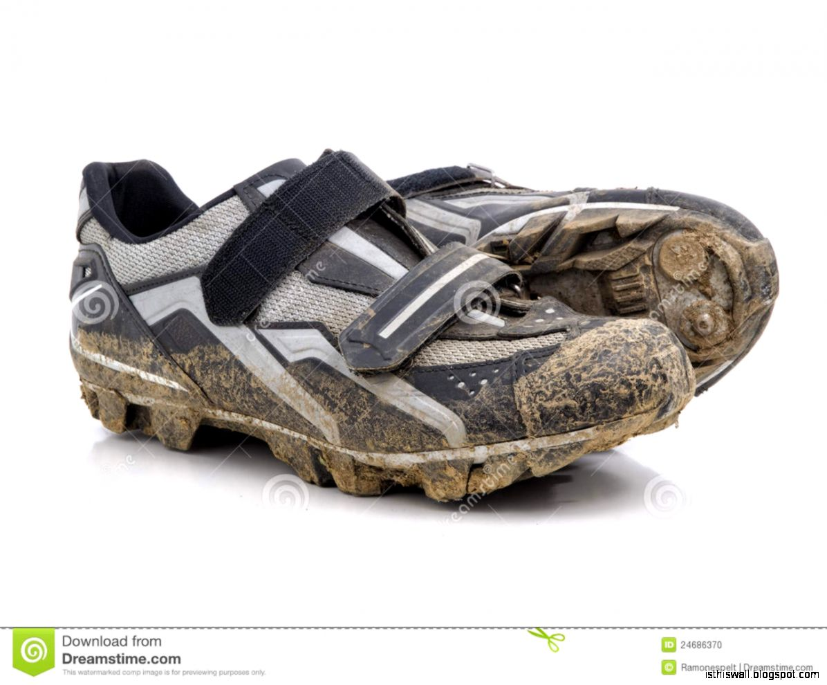Mountain Bike Shoes Stock Photo   Image 24686370