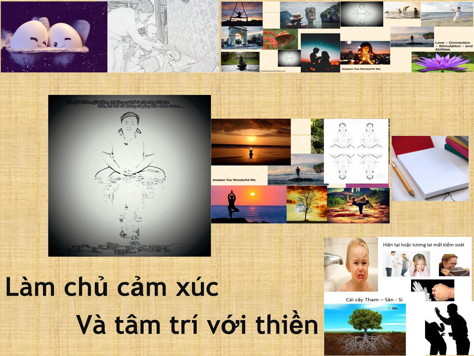 Làm chủ cảm xúc và tâm trí với Thiền Làm chủ cảm xúc và tâm trí với Thiền