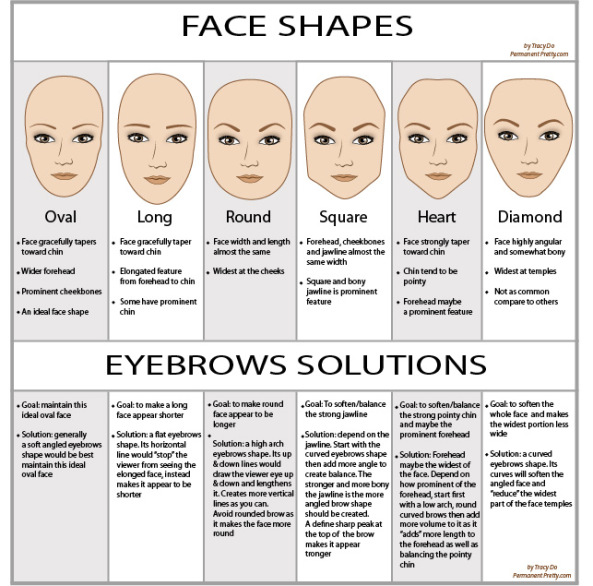 The Perfect Human Face: The Correct Eyebrow shape for your ...