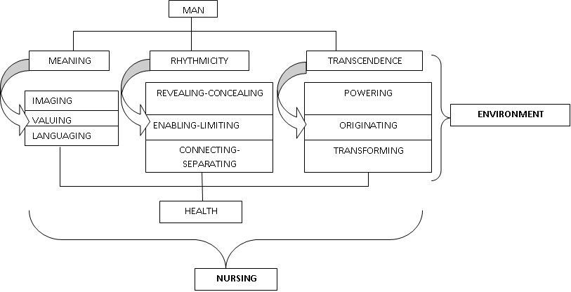rosemarie parse  human becoming theory  application to the nursing process