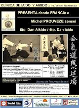 Afiche 8vo. Seminario Zanshin Dojo Aikido Guatemala