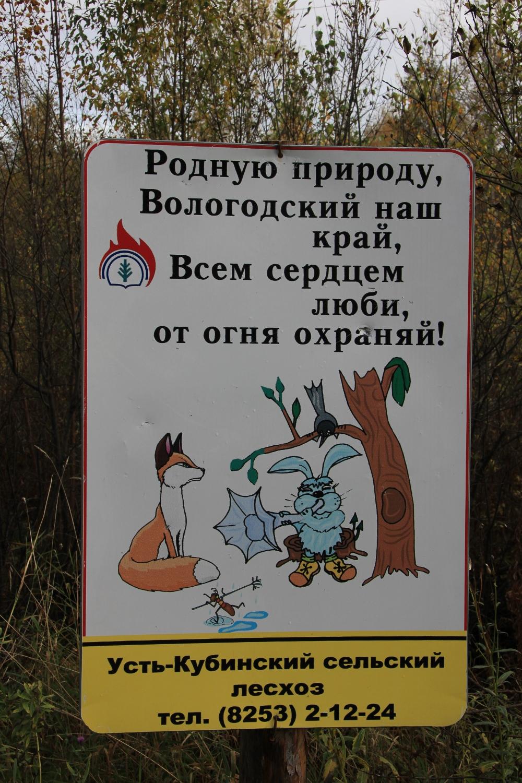 Плакат у дороги в лесу