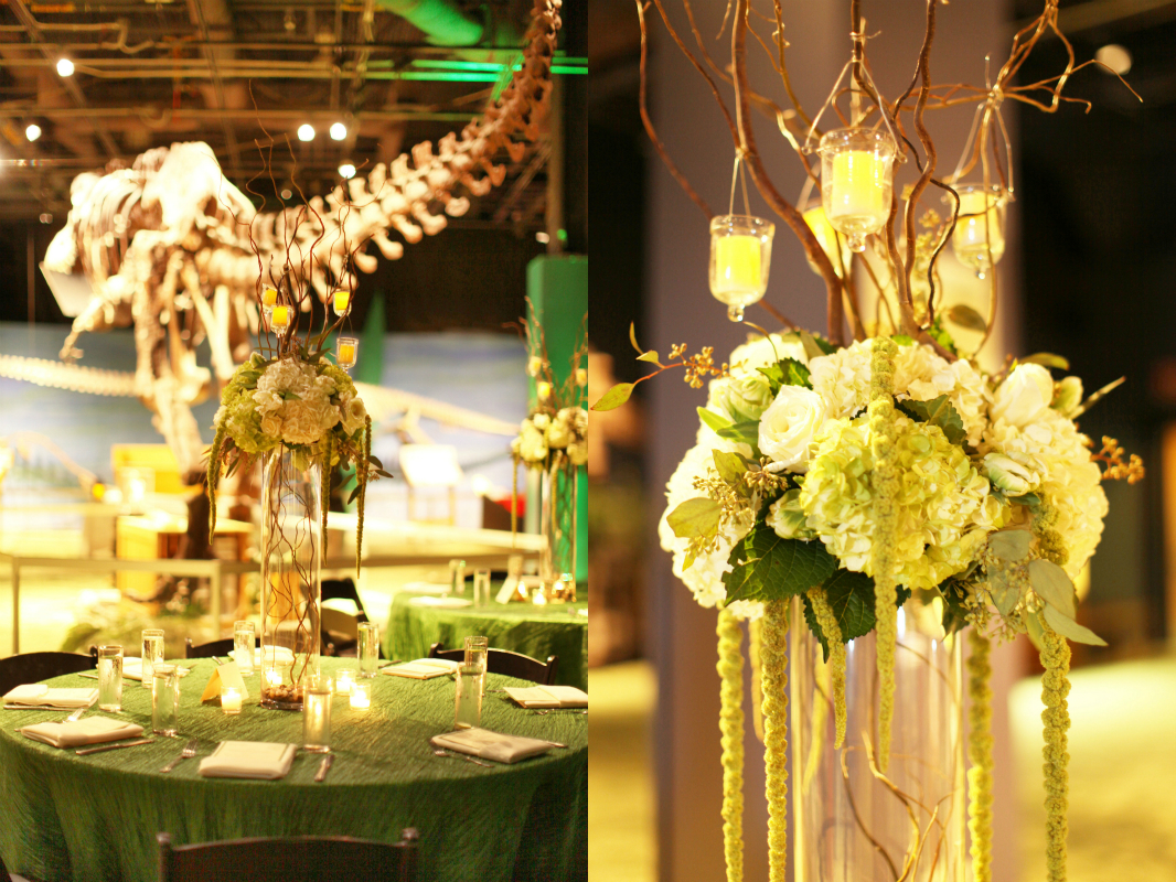 Orlando science center sara and scotts gorgeous green wedding junglespirit Images
