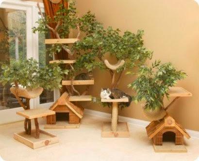 Un hogar adaptado al gato mascotas - Trepadores para gatos ...