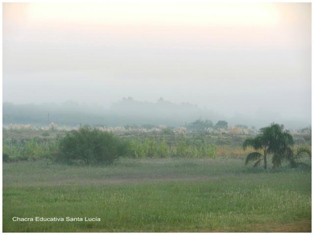 Niebla cubriendo el terreno en una mañana de invierno- Chacra Educativa Santa Lucía