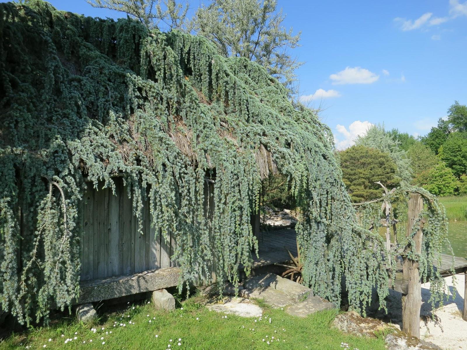 Le blog de parcs et jardins de l 39 oise sortie pjo du 6 for Le jardin en juin
