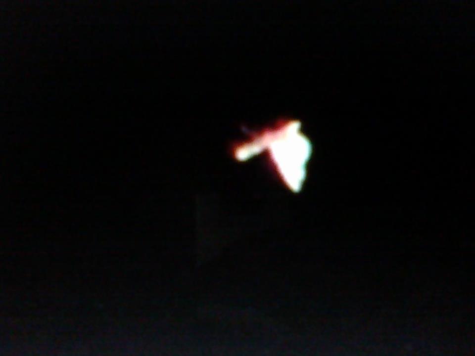 Atencion-19-enero-2012...mariposa E-OVNI-de -espaldas-vuela-SEC-UFO...