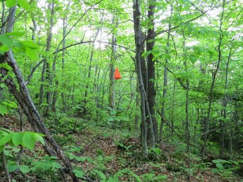 camp cache