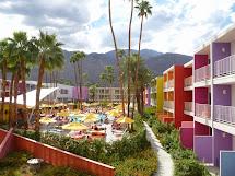Busy Beth' Saguaro Palm Springs