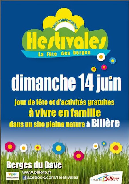 https://vuesurlespyrenees.wordpress.com/2015/06/08/les-hestivales-billere-2015/