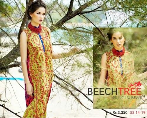 Beech Tree Spring Summer Dresses 2014