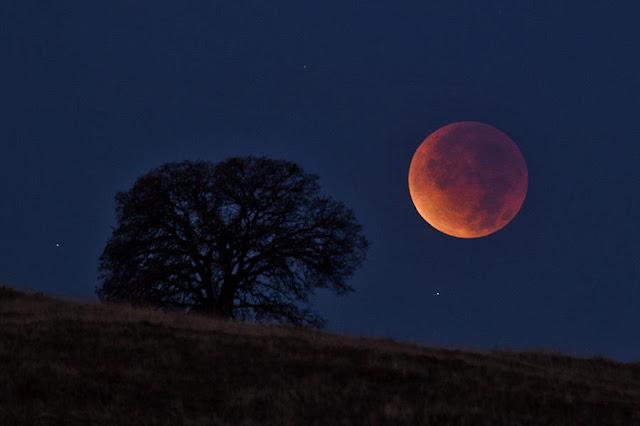 9 fatos surpreendentes sobre eclipses lunares