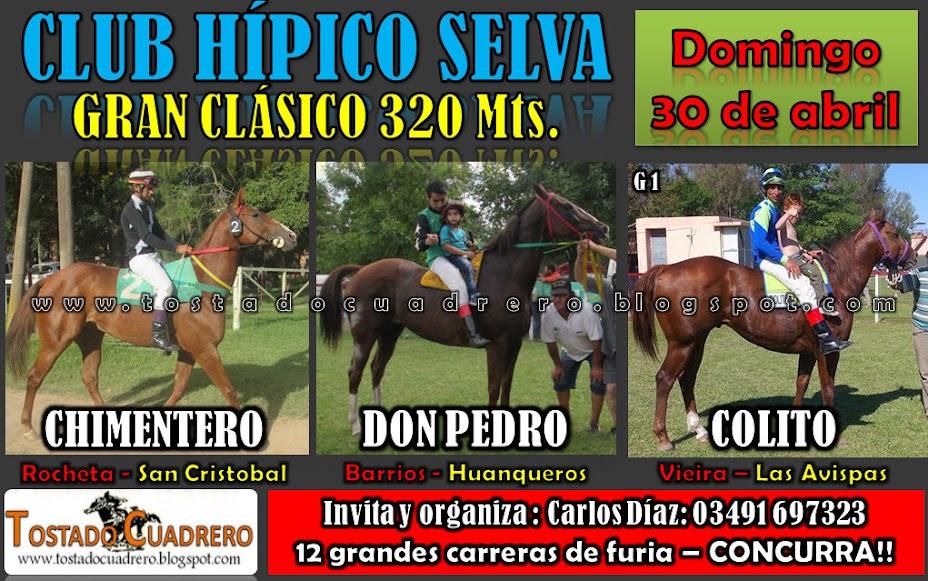 SELVA CLASICO 320