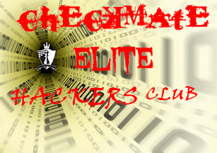 Hacking group, Checkmate Elite hackers, Checkmater, HackingLoops
