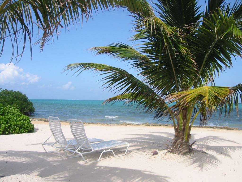 the cayman islands The cayman islands are recognised as one of the leading international financial  centres in the world, combining advanced, flexible and business-friendly laws.