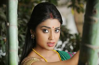 Shriya Saran in Simple Lovely Green Saree Beautiful Pics