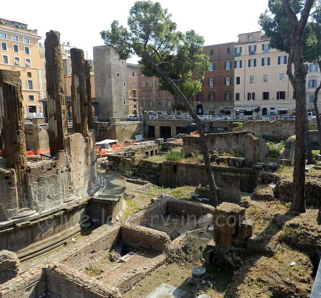 The ruins of the Largo de Torre Argentina is also home of the cat sanctuary