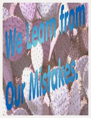 We Learn from our Mistakes.