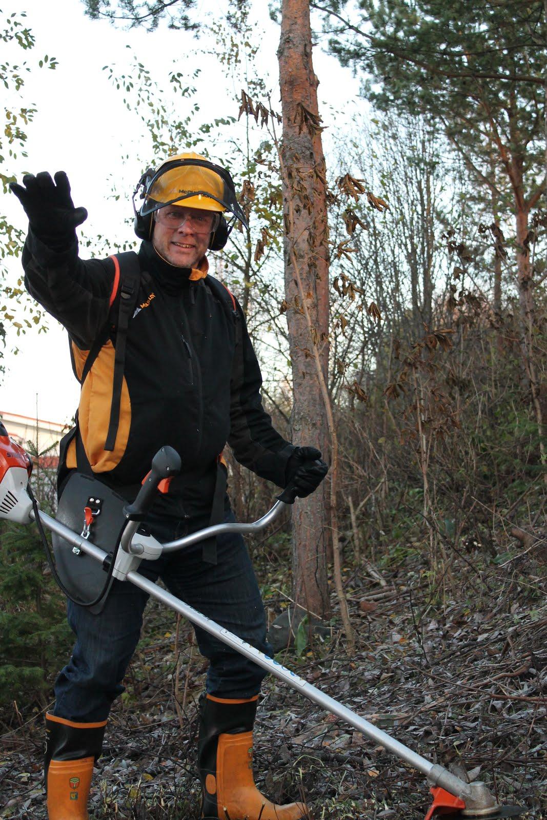 Taloyhtiöiden pensaiden pensasaitojen alasleikkaukset tuntityönä moottorisahalla talonmiespalveluna