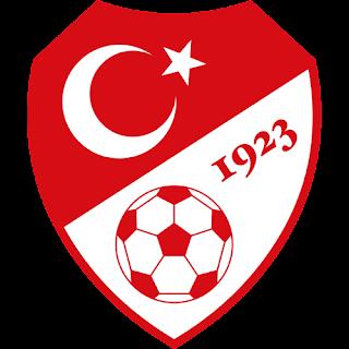 http://3.bp.blogspot.com/-DVfZ9x3ykX8/TlVO8aZf56I/AAAAAAAAAO8/j9mW57h3aqA/s1600/Turkish+Football+Federation+logo.png