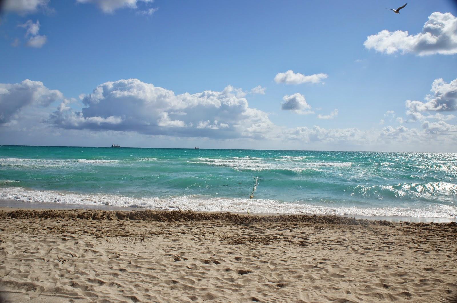 amazing South Miami Beach