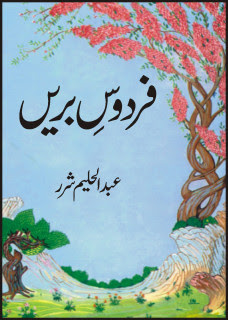 Firdous_e_Breen Urdu Novel