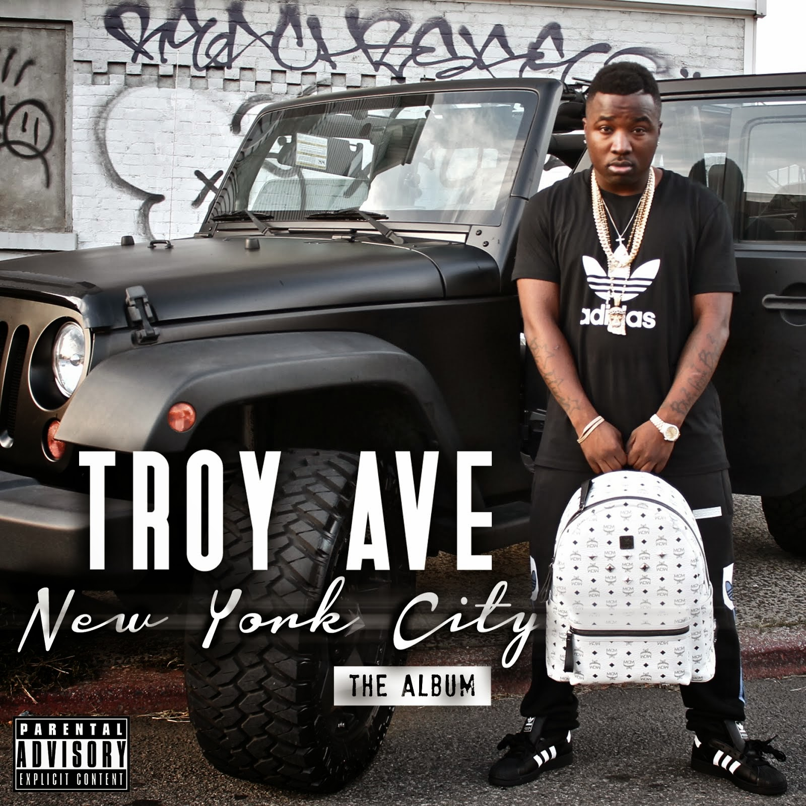Troy Ave & Adidas Present: New York City: The Album