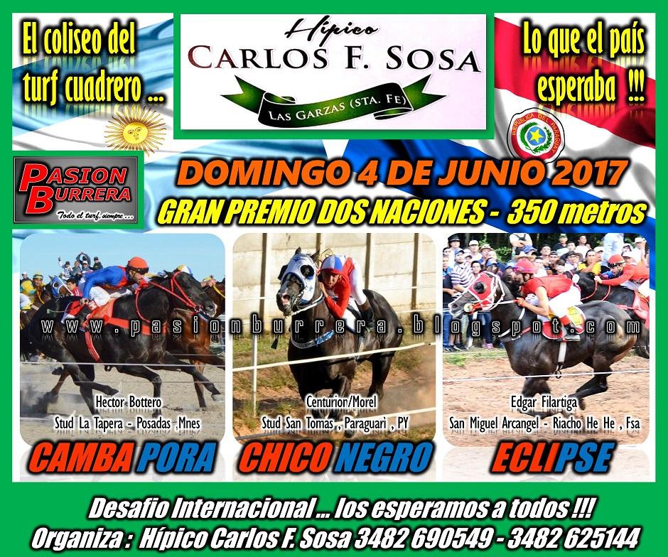 LAS GARZAS - 4 JUNIO - 350